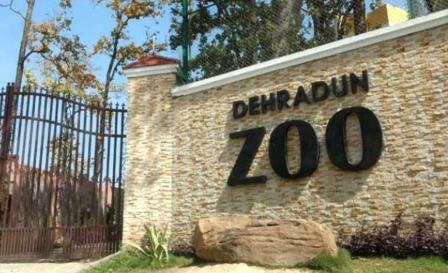 Doon Zoo: आमजन के लिए जल्द खुलेगा दून चिड़ियाघर