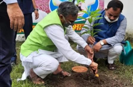Harela festival Uttarakhand: सीएम त्रिवेन्द्र रावत व राज्यपाल ने पौध रोपण कर की हरेला की शुरूआत
