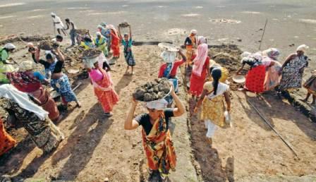 MNREGA: सिर्फ मजदूरी के लिए नहीं अब मनरेगा, स्वयं का काम धंधा भी कर सकते लोग
