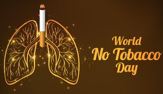 वेब चर्चा: विशेषज्ञों ने तम्बाकू के सेवन को बताया विभिन्न बीमारियों का कारक