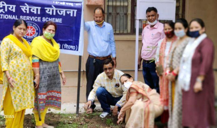 हरेला सप्ताहः पीजी कालेज नई टिहरी में वृक्षारोपण कार्यक्रम, लिया पर्यावरण संरक्षण का संकल्प
