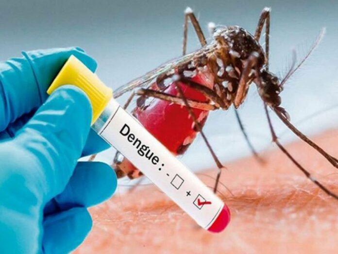 खतरनाक बीमारी डेंगू का प्रकोप इस समय कोविड को कर सकता ओवरलैप